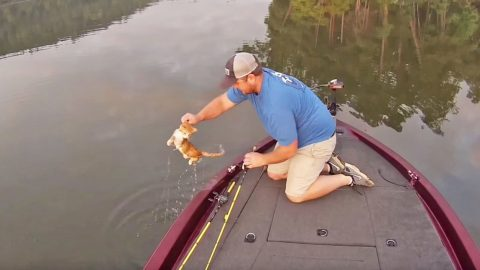 Alabama Fishermen Take 'Catfishing' To A Whole New Level | Country Music Videos