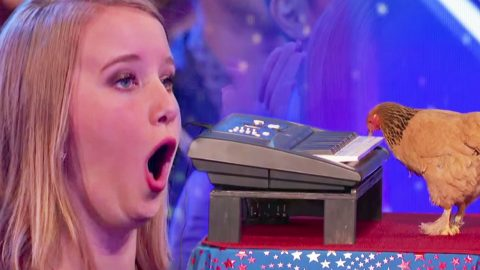 Audience Boos Weird Act…But Then A Chicken Starts Playing The Piano? Hysterical   Country Music Videos