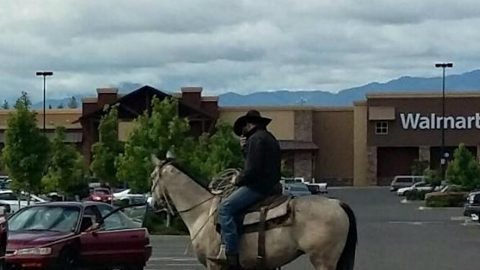 Real Life Cowboy Lassoes Thief, Ties Him To A Tree In Walmart Parking Lot | Country Music Videos