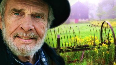 Merle Haggard – Never No Mo' Blues (VIDEO)   Country Music Videos