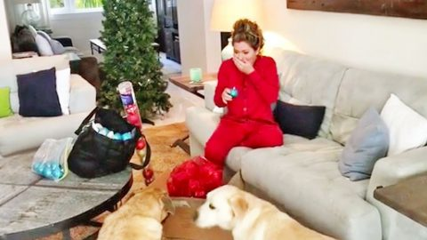 Shania Twain Gets Scared Silly While Trying To Film Christmas Greeting For Fans   Country Music Videos