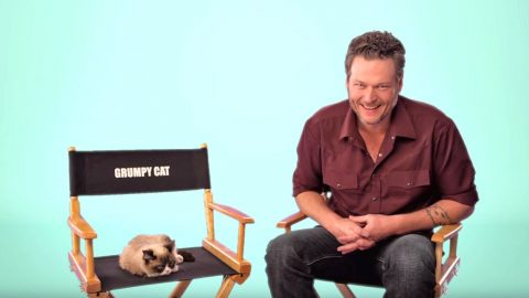 Grumpy Cat Is Unamused By Blake Shelton's Jokes | Country Music Videos