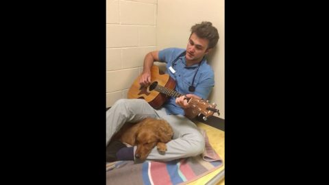 Veterinarian Sings Elvis Tune To Calm Scared Dog Before Surgery | Country Music Videos