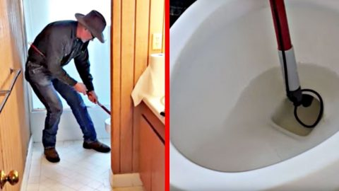 See The 'Worst Nightmare' This Texan Yanked From His Toilet   Country Music Videos