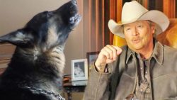 Dog Pays An Emotional Tribute To Alan Jackson's 'Remember When' | Country Music Videos