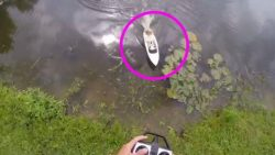 Remote Control Boat Catches A Fish – Now Pay CLOSE Attention To What's Inside Of It   Country Music Videos