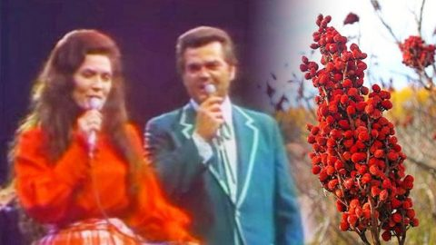 Conway Twitty and Loretta Lynn – Pickin' Wild Mountain Berries (LIVE) | Country Music Videos