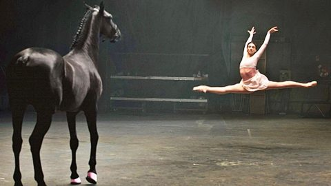 When A Ballerina Has A Dance-Off Against A Horse, What Happens Next Will Blow Your Mind | Country Music Videos