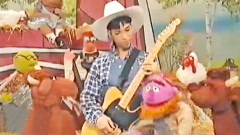 Absolutely No One Expected Prince AKA 'The Artist' To Be A Guitar-Slinging Farmer On 'Muppet Hoo Haw' | Country Music Videos