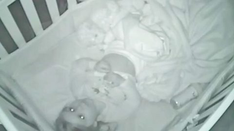 Parents Find Their Toddler Doing THIS On The Baby Monitor. I'm Speechless! | Country Music Videos