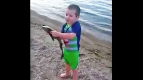 Little Boy Catches Fish And You Won't Believe Your Eyes | Country Music Videos