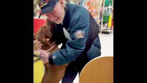 Military Veteran Bursts Into Tears After Being Reunited With Dogs | Country Music Videos