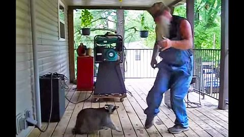 Country Man Starts Dancing & His Pet Raccoon Joins In | Country Music Videos