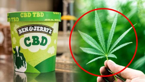 Ben And Jerry's Really Outdid Themselves This Time – CBD-Infused ...