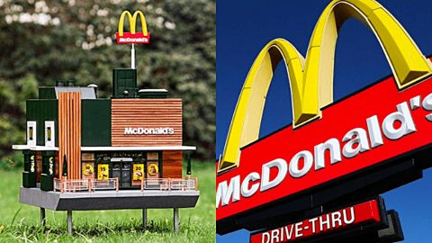 Peek Inside The World's Smallest McDonald's Restaurant Built For Bees   Country Music Videos