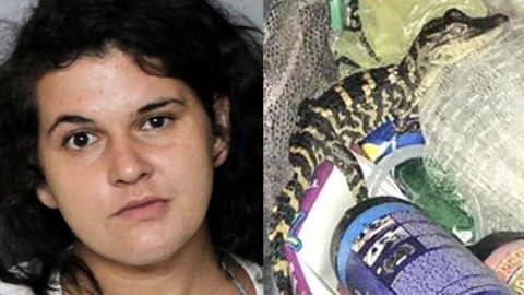 Woman Hides Alligator In Her Yoga Pants During Traffic Stop | Country Music Videos
