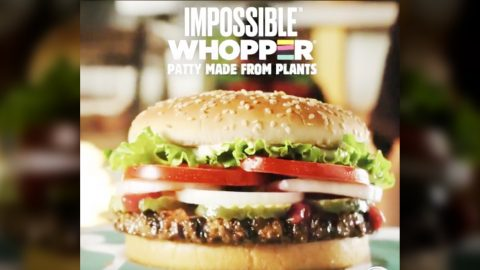 Vegan Sues Burger King – Says Impossible Whopper Was 'Contaminated By Meat' | Country Music Videos