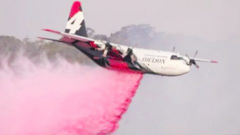 3 U.S. Firefighters Die In Plane Crash While Fighting Australia Fires | Country Music Videos