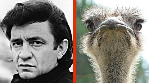 How Johnny Cash Was Once Nearly Killed By His Pet Ostrich | Country Music Videos