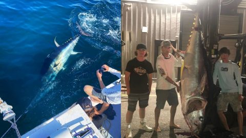 3 Teenagers Caught 750-Pound Tuna 40 Miles Off Maine By Themselves | Country Music Videos