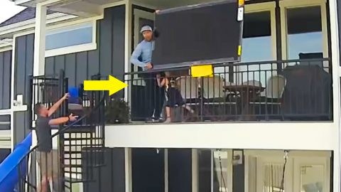Dad Drops TV From 2nd Story After Toddler Punches Him In The Crotch | Country Music Videos