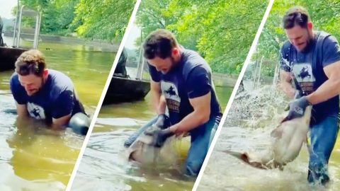 """Carrie Underwood's Husband Mike Fisher Snags Massive Catfish While """"Noodling""""   Country Music Videos"""