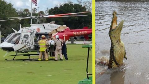 Bicyclist Falls Off Bridge In Florida & Get's Bitten By Alligator   Country Music Videos